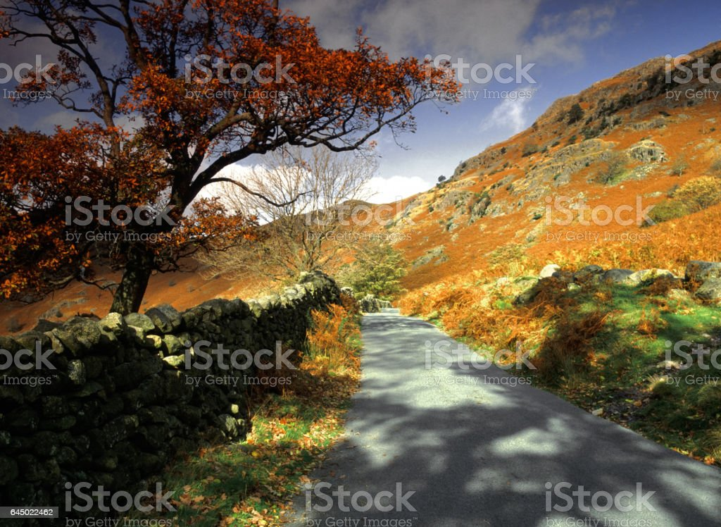 langdale stock photo