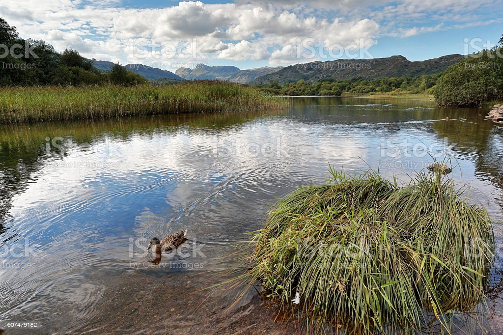 Langdale Pikes from Elterwater stock photo