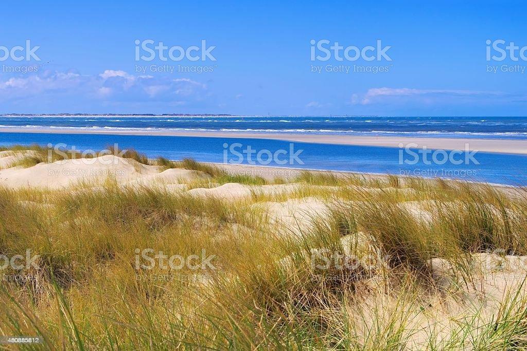 Langeoog Dune stock photo