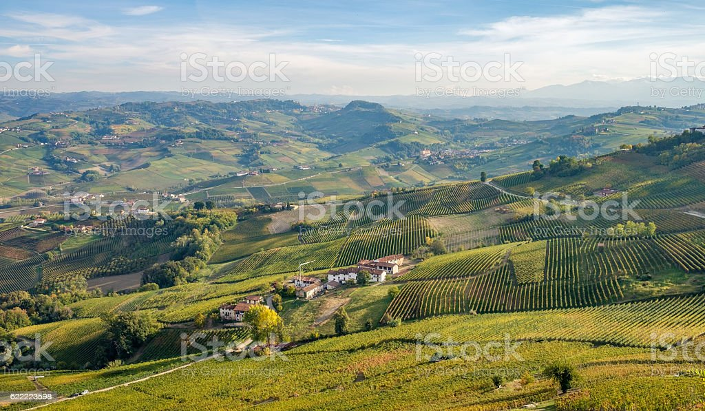 Langhe wineyards hills, Cuneo, Piedmont  Italy. Barolo, Barbaresco Dolcetto wines stock photo