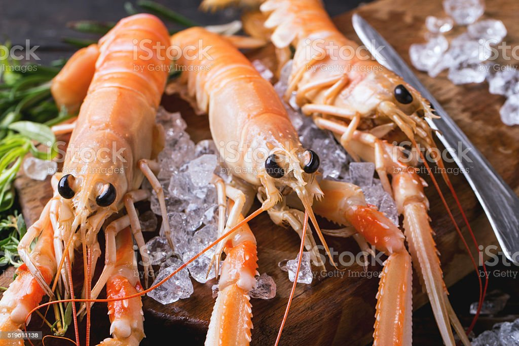 Langoustines on ice stock photo