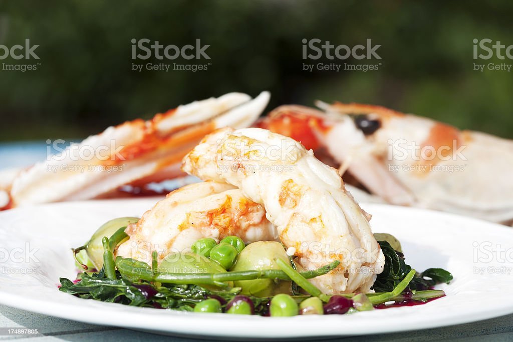 Langoustines with sea vegetables stock photo