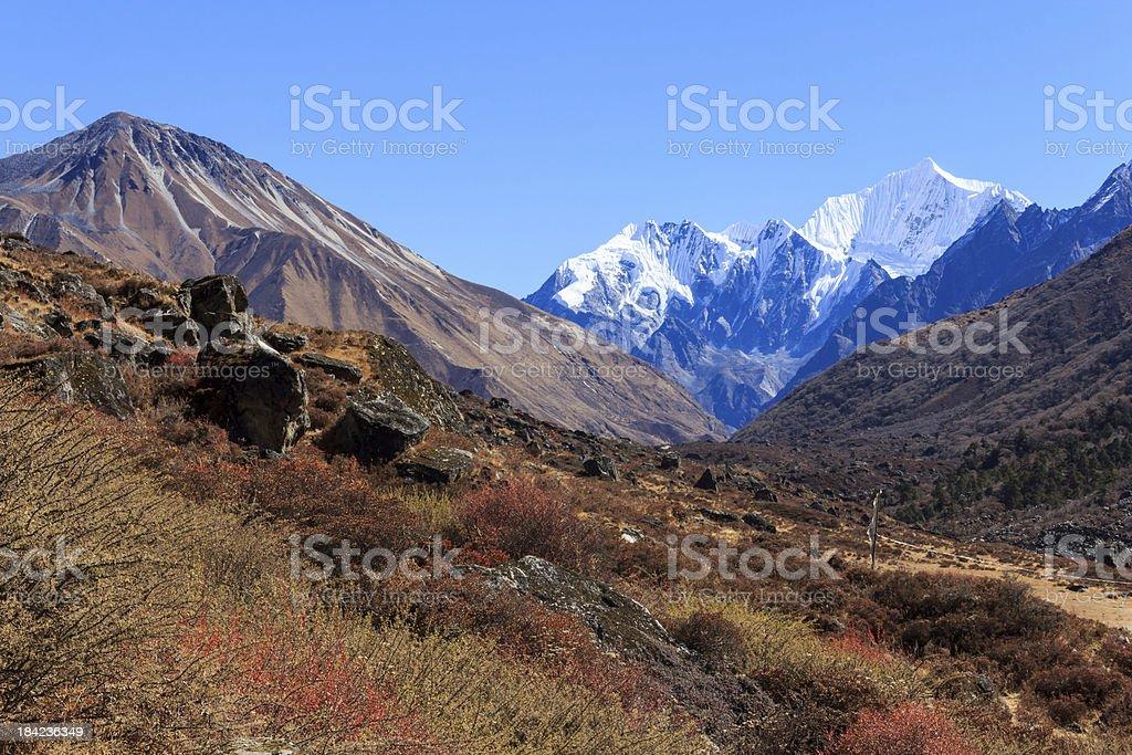Langtang trek,Nepal royalty-free stock photo