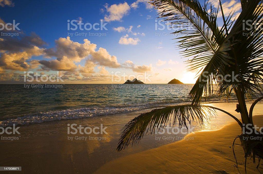 Lanikai Beach in Hawaii sunrise scene stock photo
