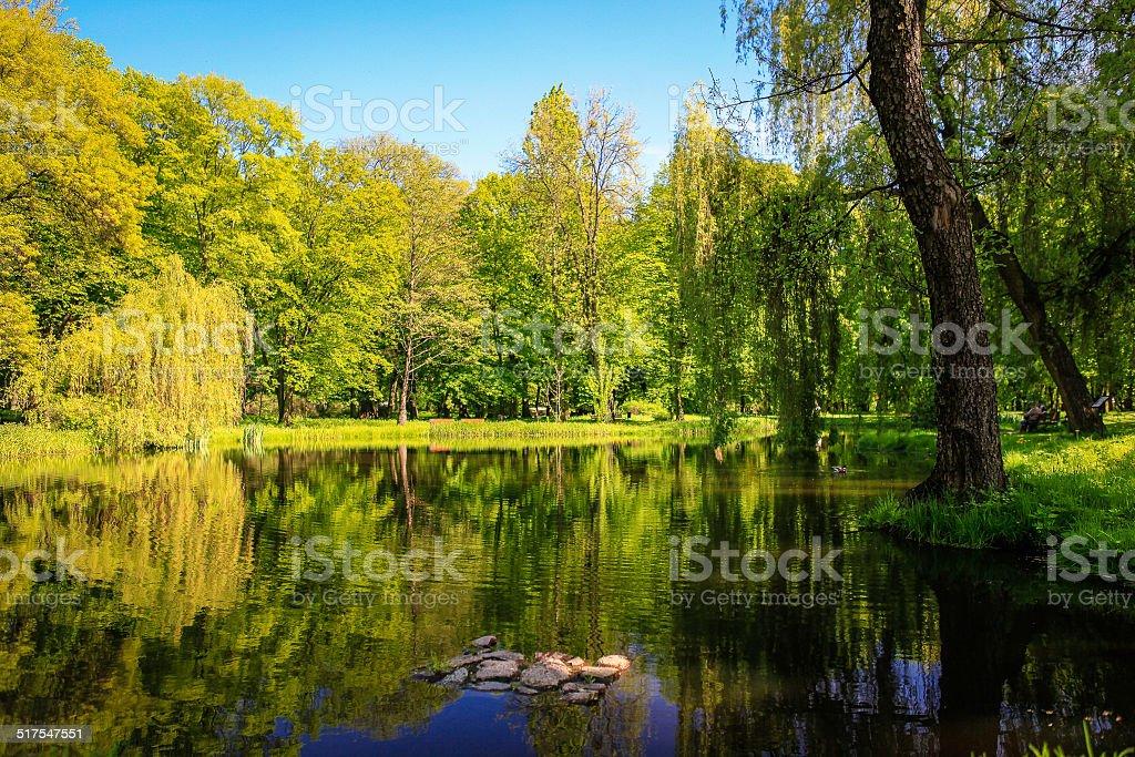Lanscape around small pond stock photo
