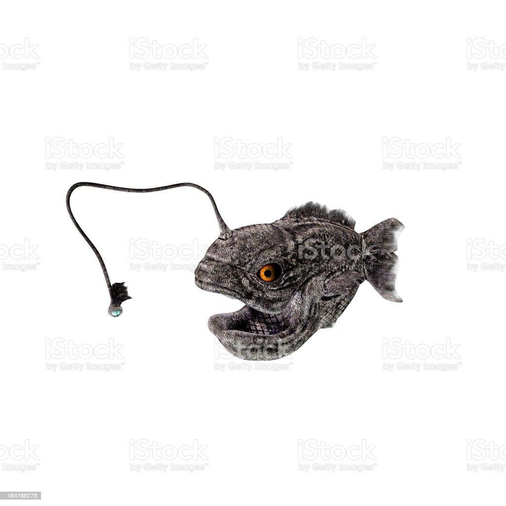 lantern fish stock photo