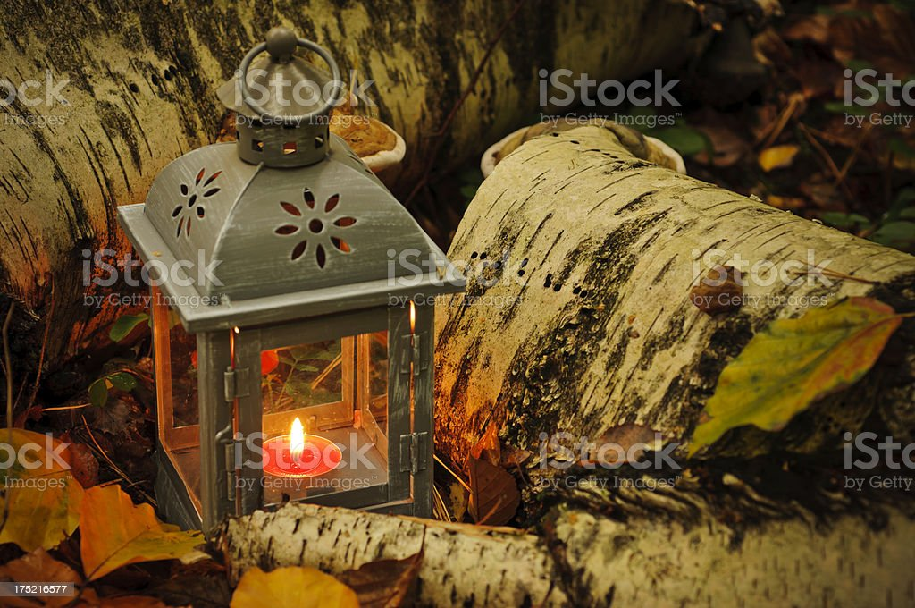 Lantern in autumn forest stock photo