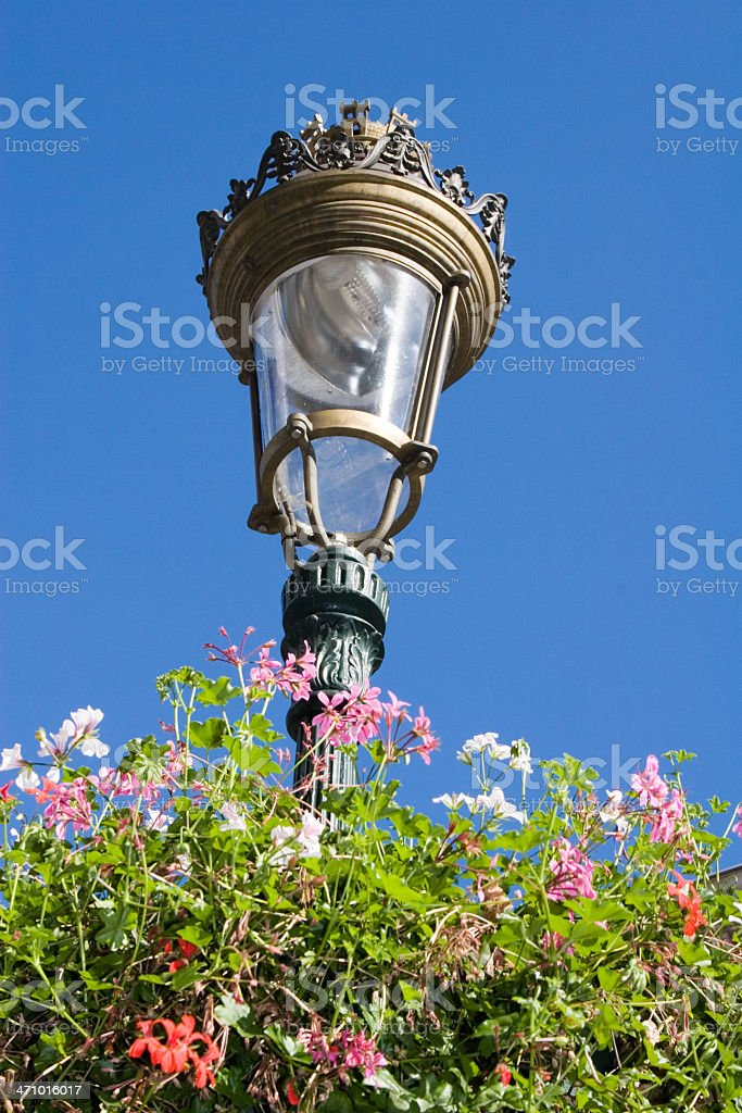 Lantern in flowers against blue sky royalty-free stock photo