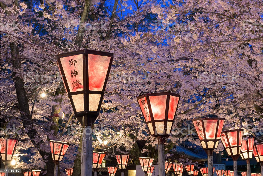 Lantern in Sakura Festival, Japan stock photo