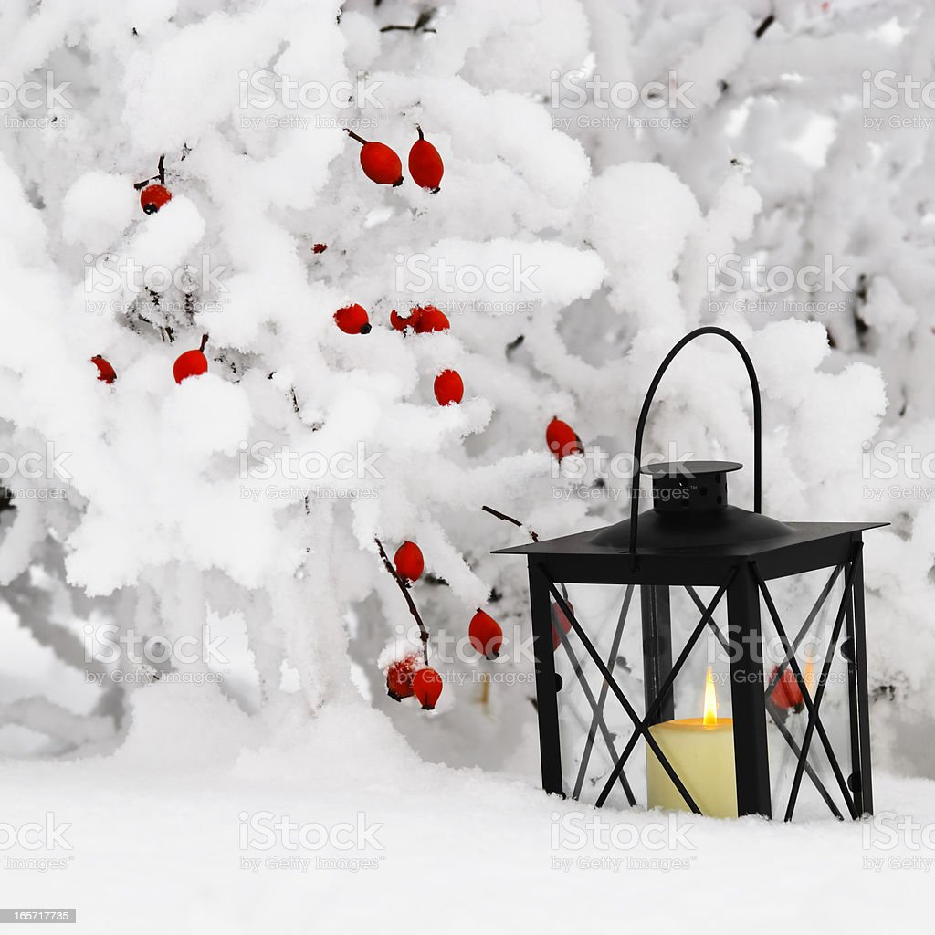 Lantern in snow royalty-free stock photo