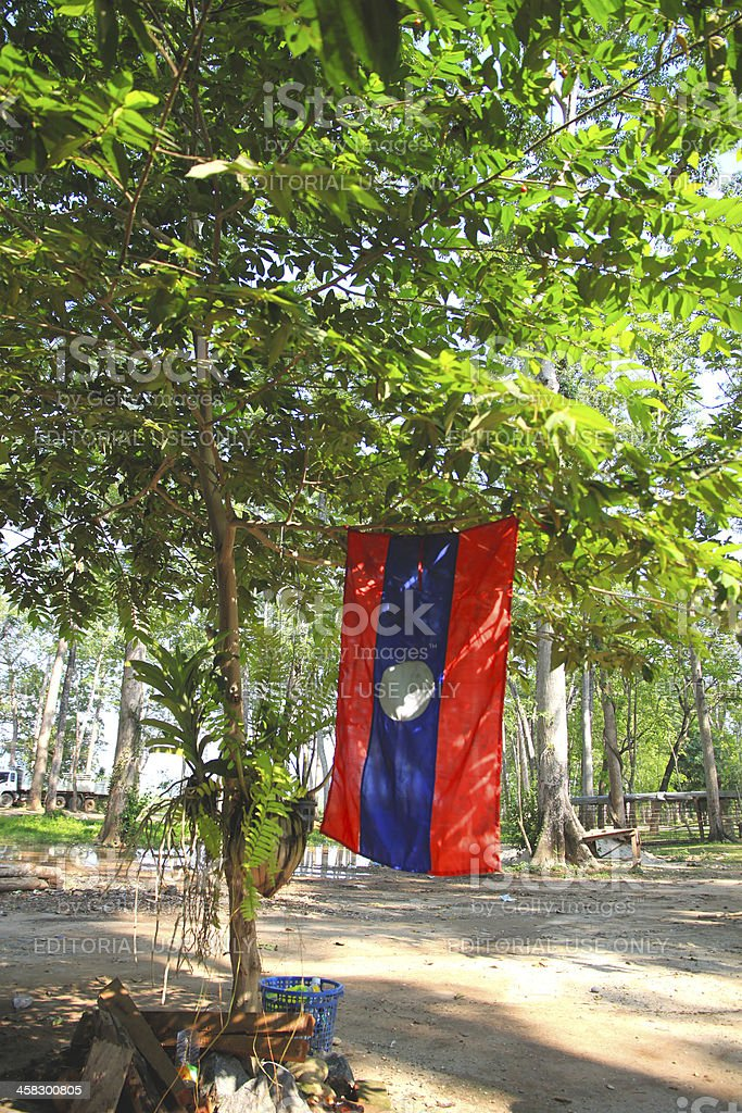 Laos Flag in Forest royalty-free stock photo