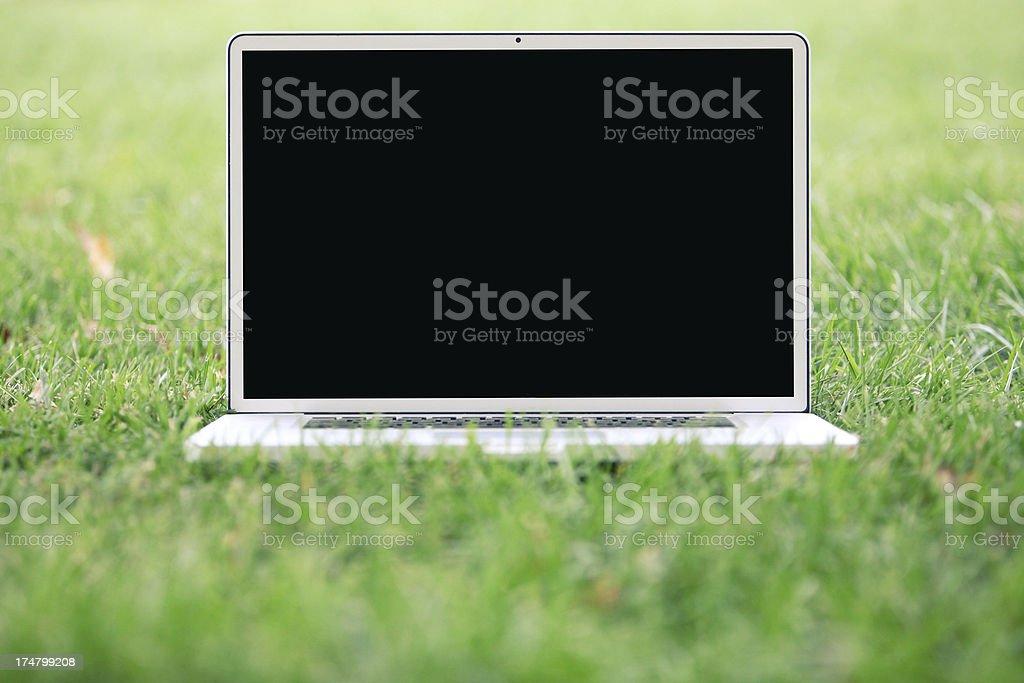 Laptop Green royalty-free stock photo