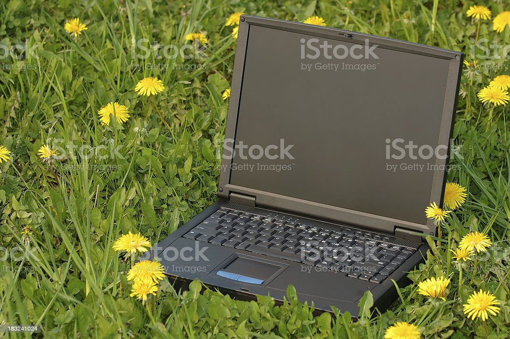 laptop on a meadow royalty-free stock photo