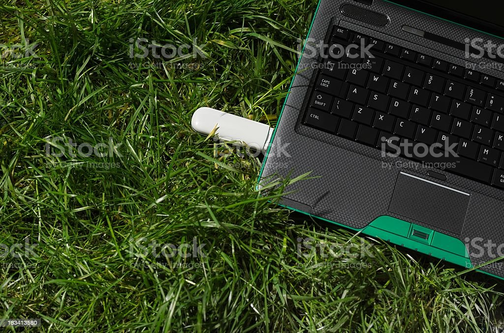 Laptop on grass royalty-free stock photo