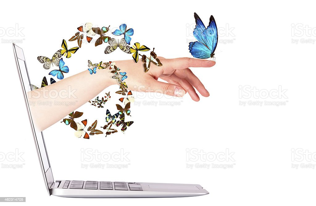 Laptop side view with  butterfly on hand royalty-free stock photo