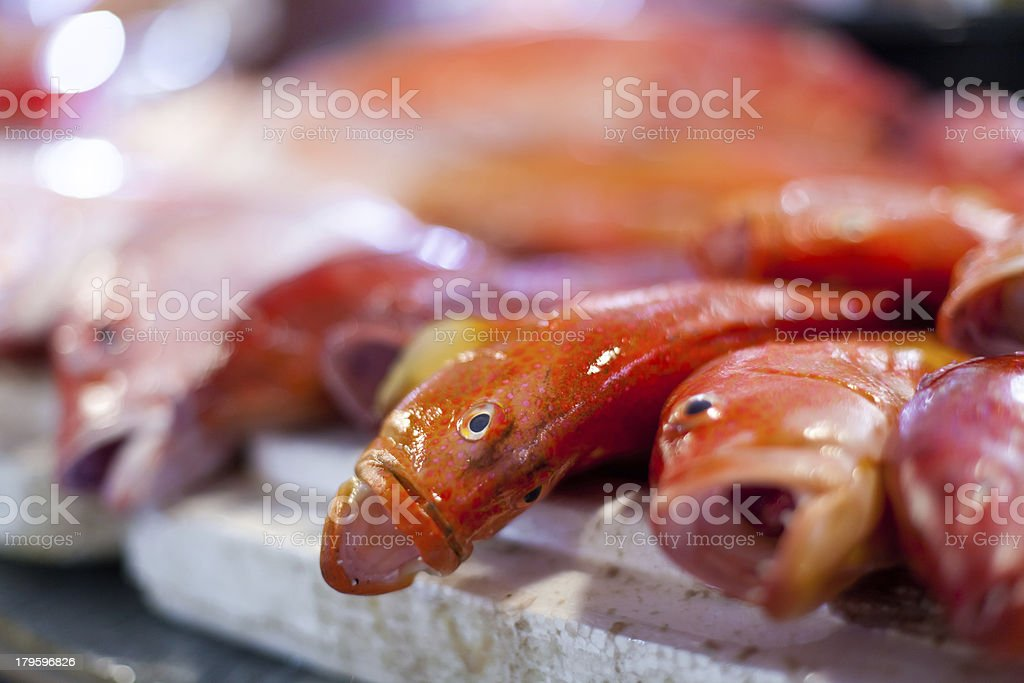Lapu-lapu, red snapper and tuna, seafood on market royalty-free stock photo