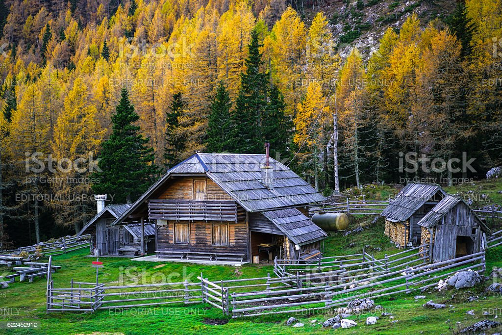 Larch Trees and traditional cottage in Mountains, Slovenia stock photo