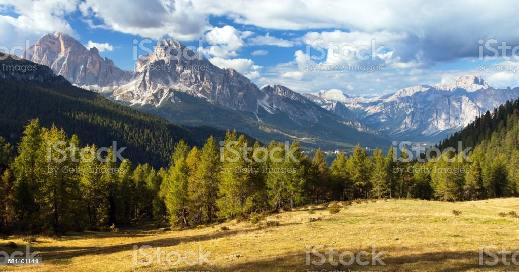 Larch wood, Le Tofane Gruppe and Hohe Gaisl, Dolomites stock photo