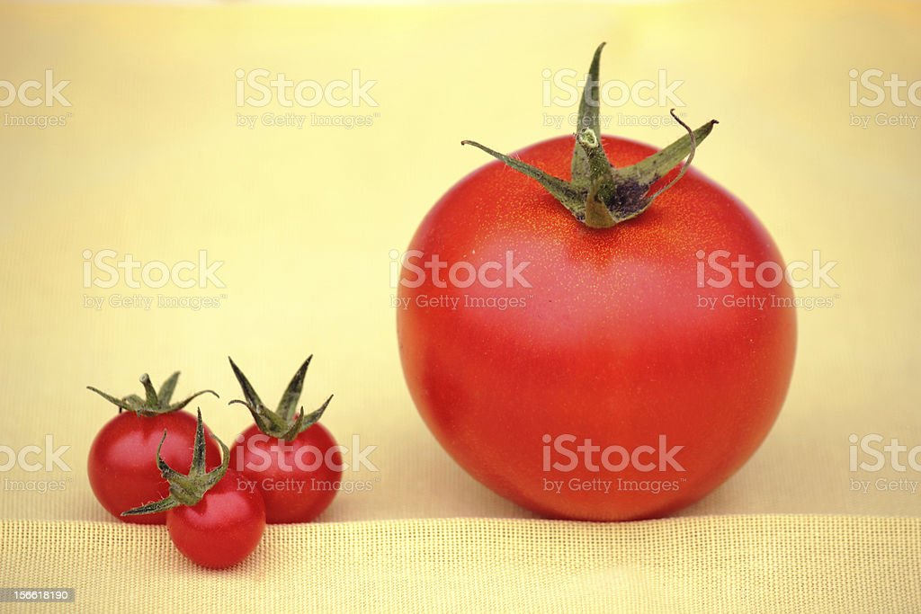 large and small red tomatoes royalty-free stock photo