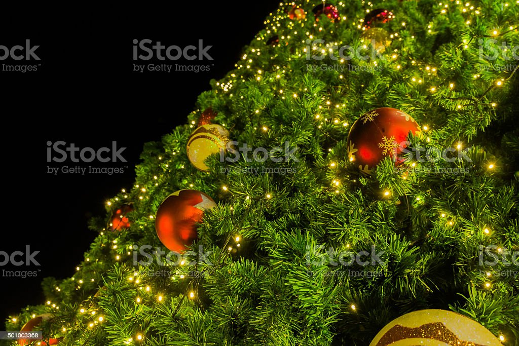 Large christmas tree stock photo