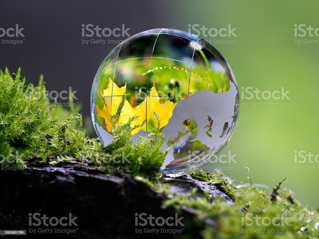 Large clear glass ball lying on the moss stock photo