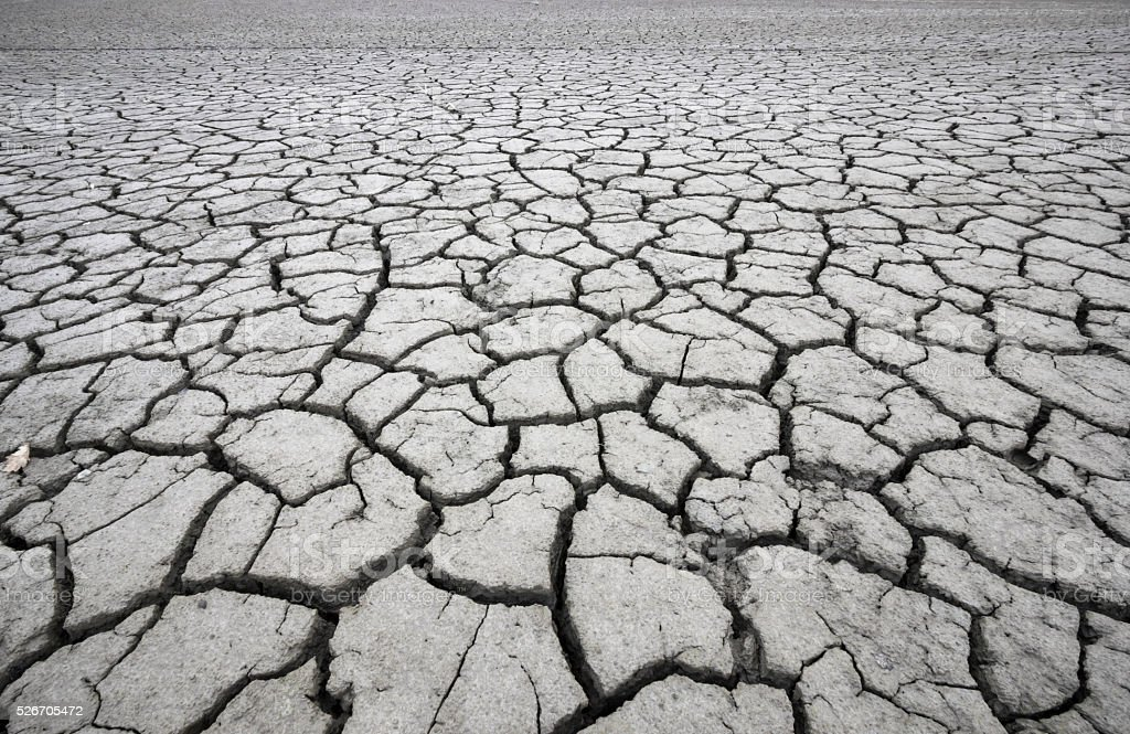Large cracked land field stock photo