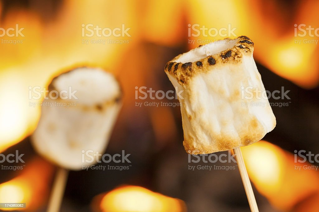 Large, delicious marshmallows being roasted over a fire stock photo