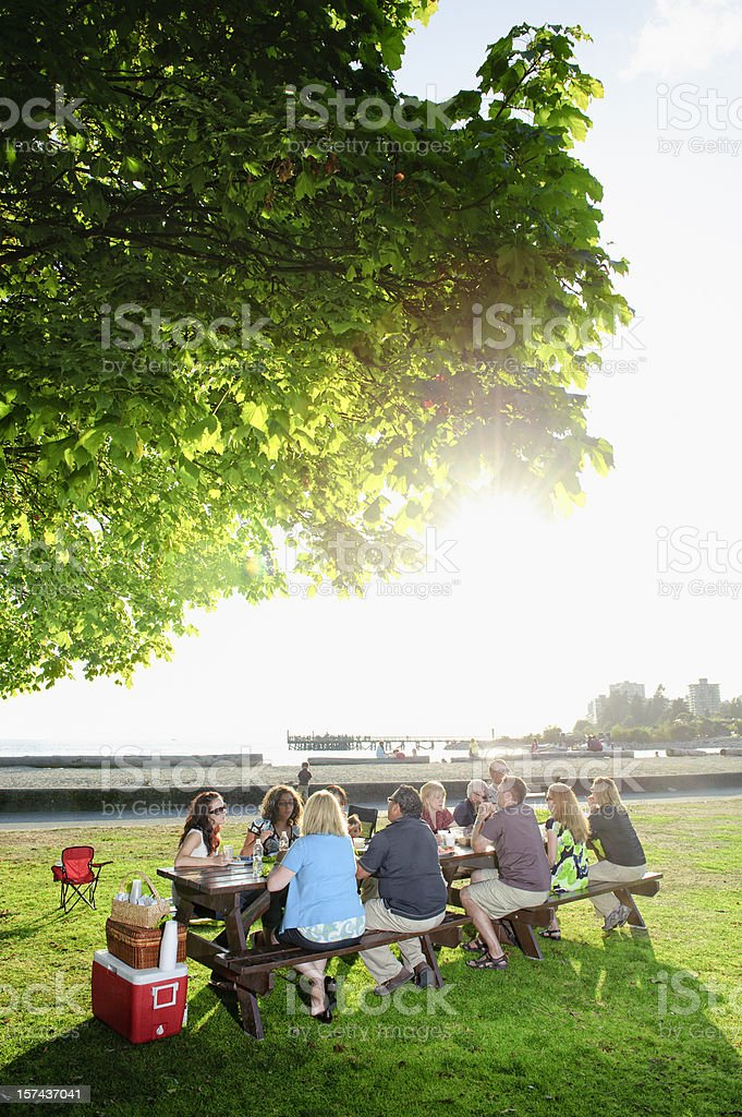 Large Family Picnic stock photo
