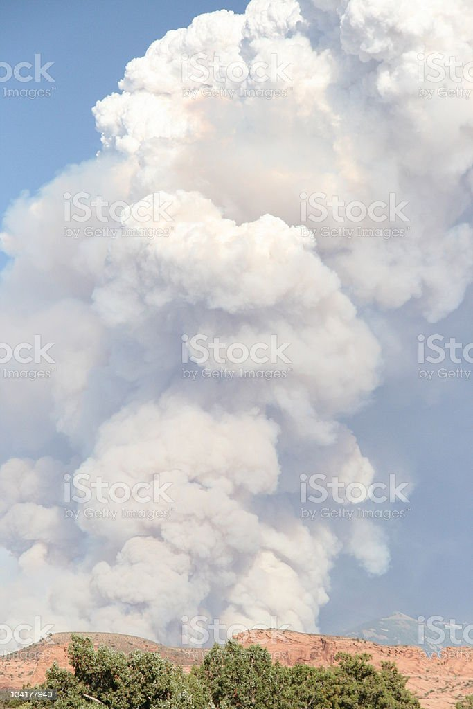Large Forrest fire stock photo