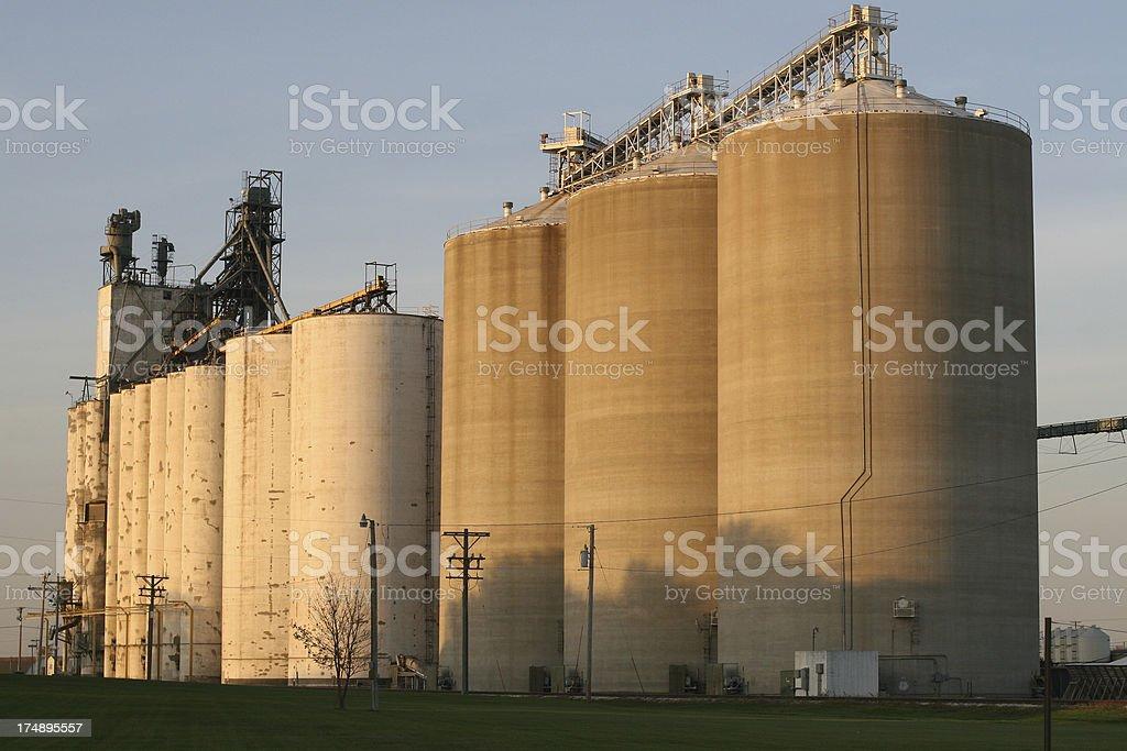 Large Grain Elevators - Iowa Autumn Evening View stock photo