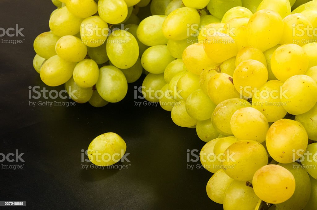 Large grapes cluster stock photo
