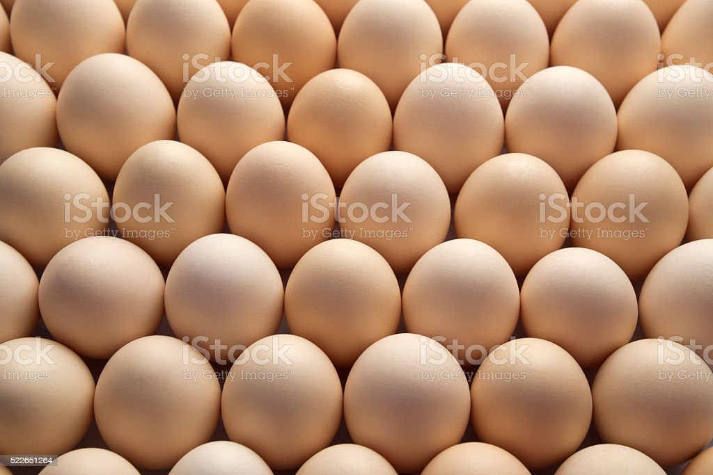 Large group of Brown egg. stock photo