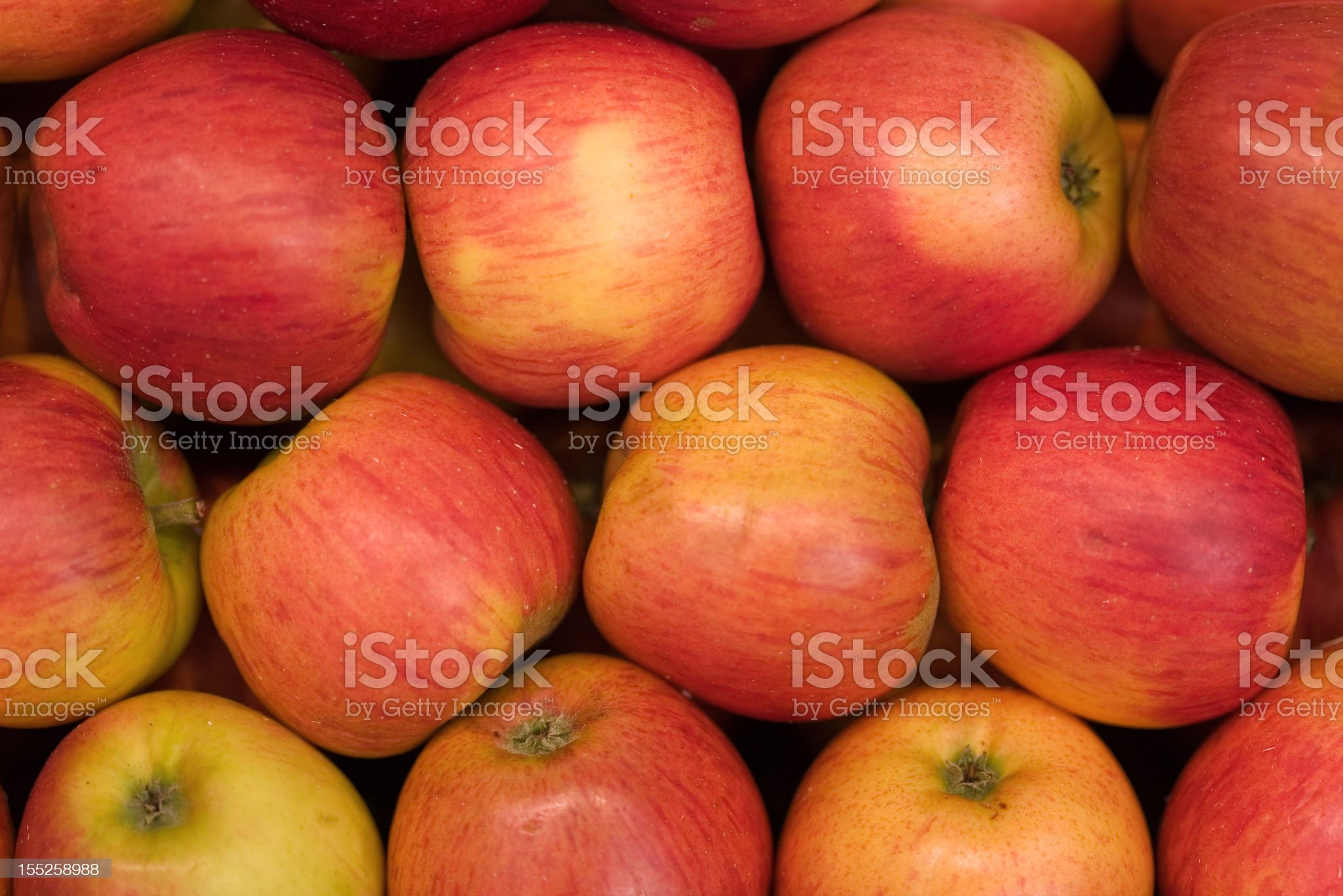 large group of red apples royalty-free stock photo