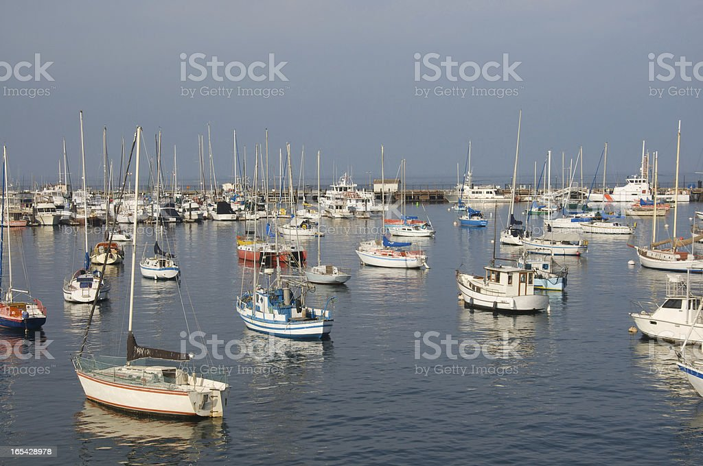 Large group of sail boats in a marina royalty-free stock photo