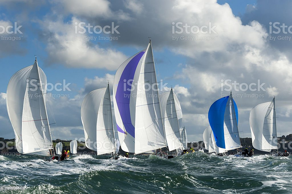 A large group of sailboats at regatta stock photo