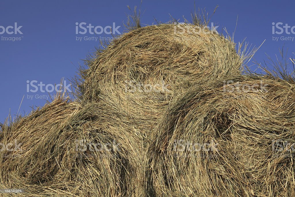 Large hay against blue sky stock photo
