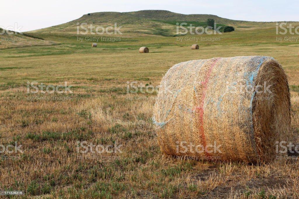 Large Hay Bale stock photo