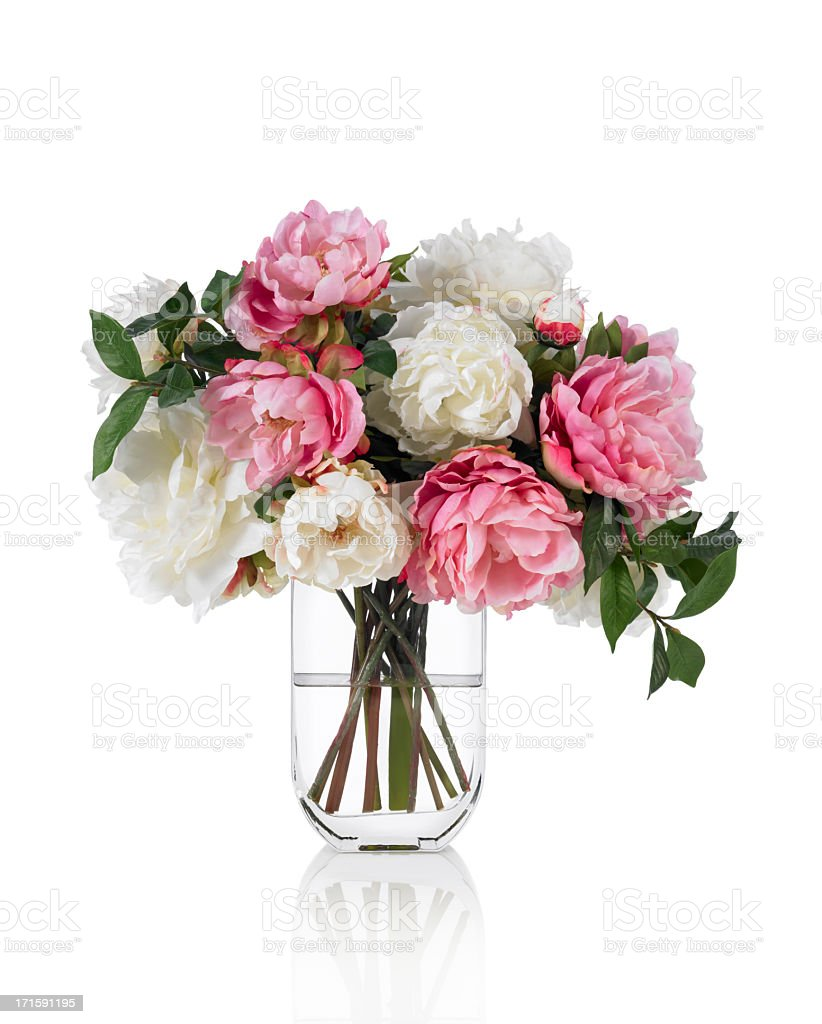 Large mixed Peonies spring bouquet on white background stock photo