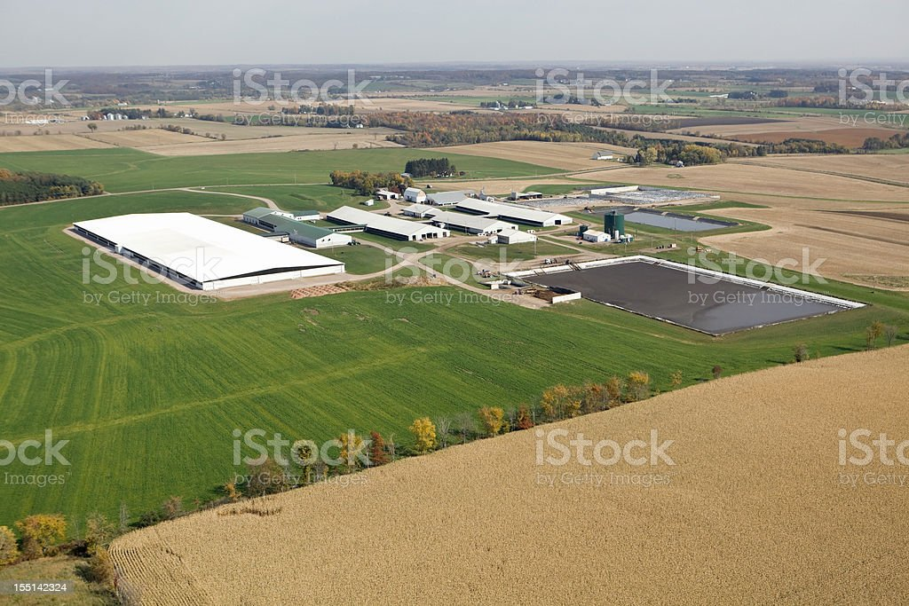 Large Modern Dairy Farm Operation Fall Aerial royalty-free stock photo