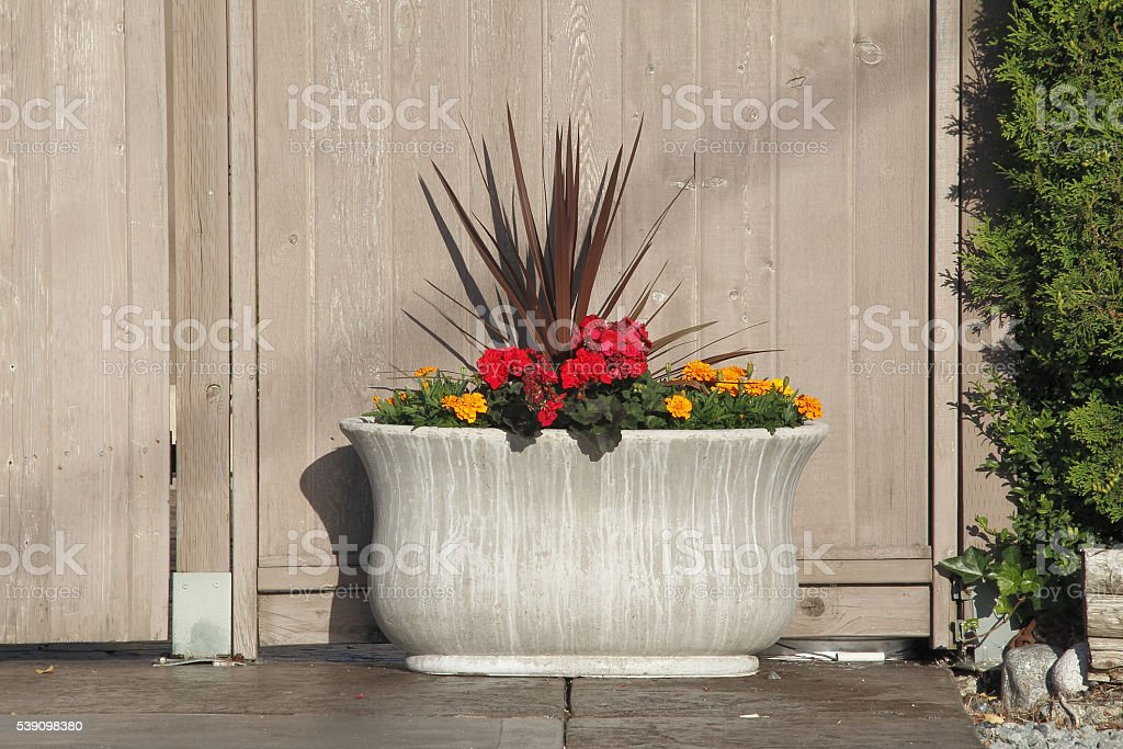 Large Outdoor Flower Planter stock photo