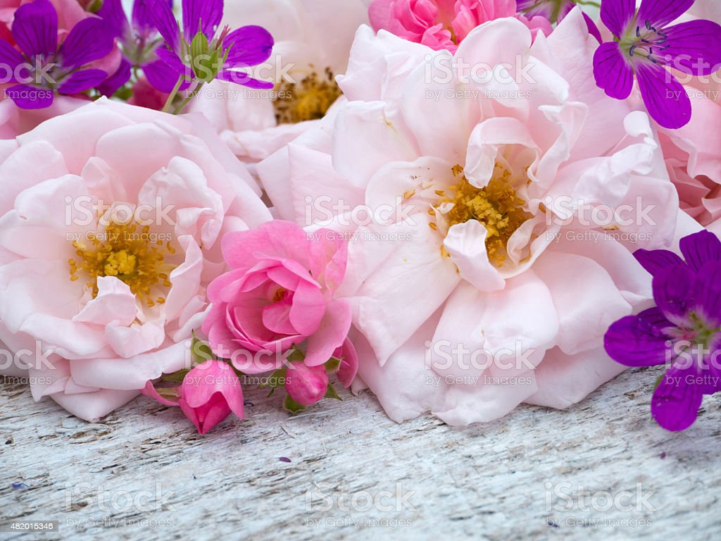 Large pale pink and  bright pink roses and geranium bouquet stock photo