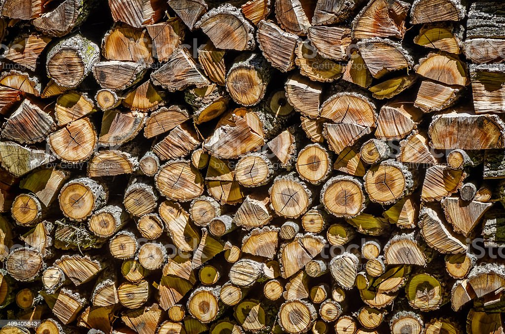 Large Pile of Cut Logs stock photo