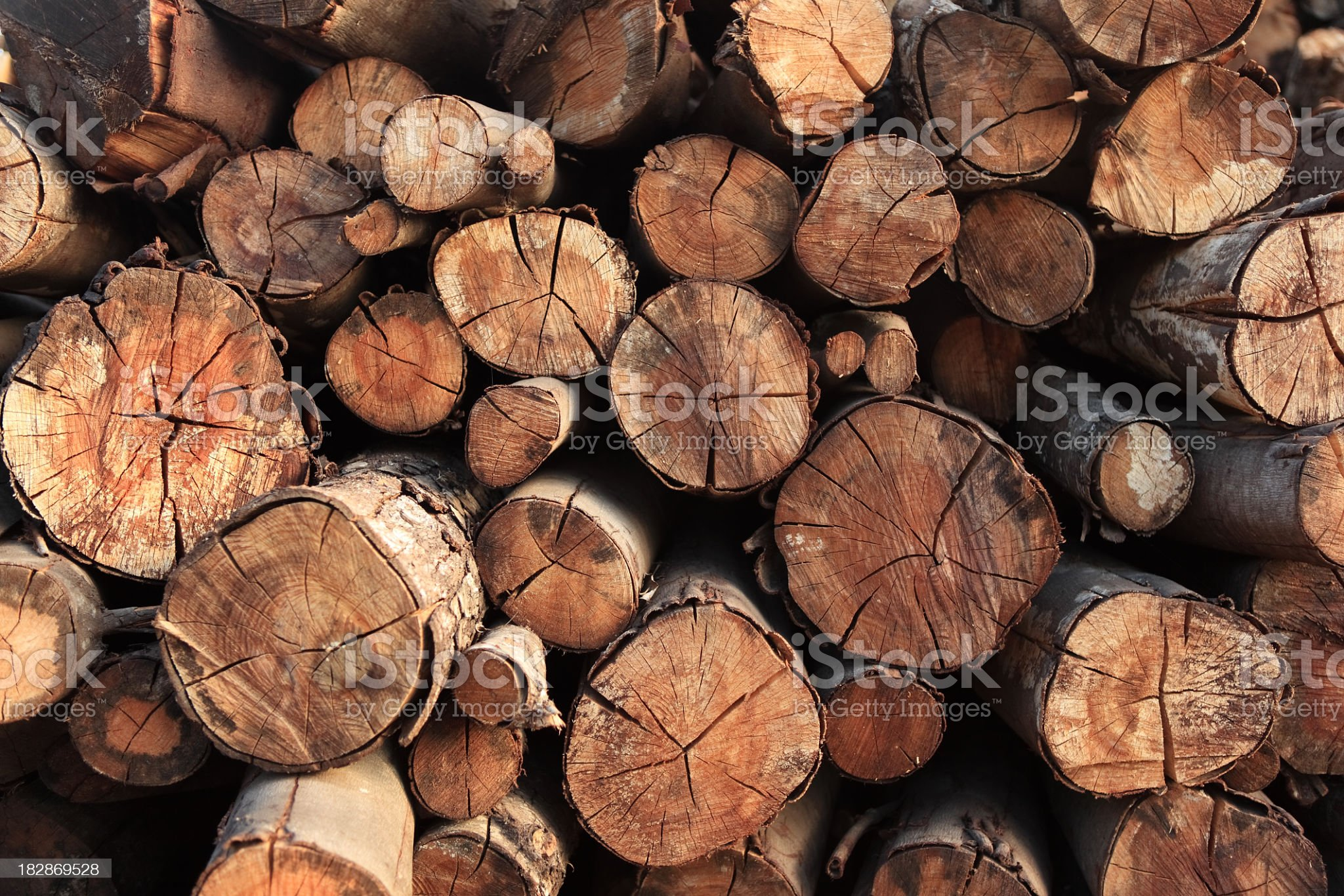 Large pile of different sized logs royalty-free stock photo
