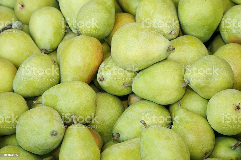 A large pile of freshly picked pears  stock photo