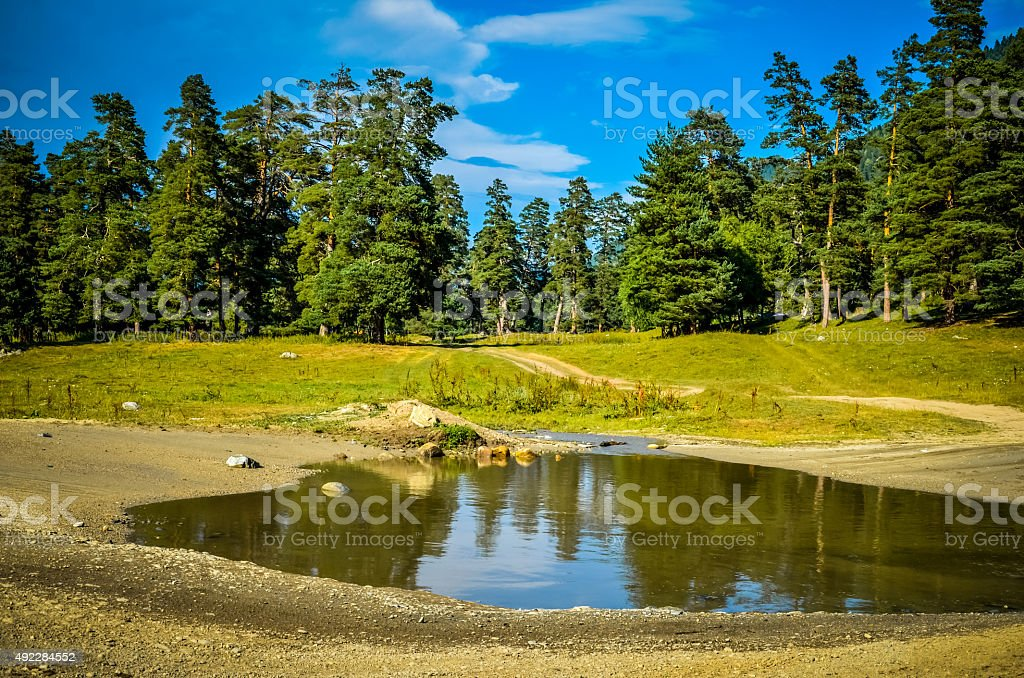 Large puddle on the road to the forest stock photo