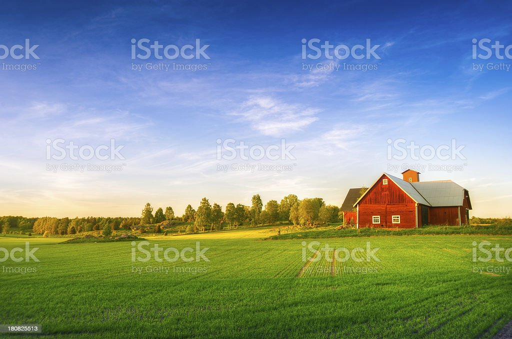 A large red house at the end of a green summer field stock photo