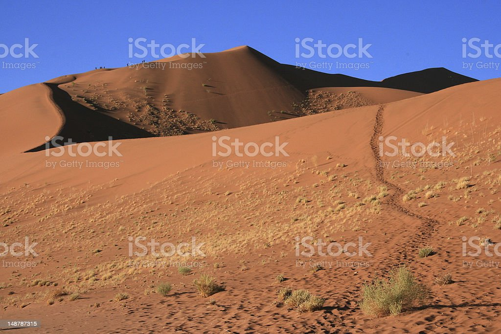 Large red sand dune in Namibia stock photo