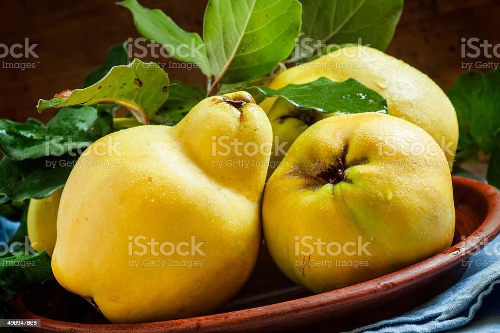 Large ripe quince with leaves on a clay plate stock photo