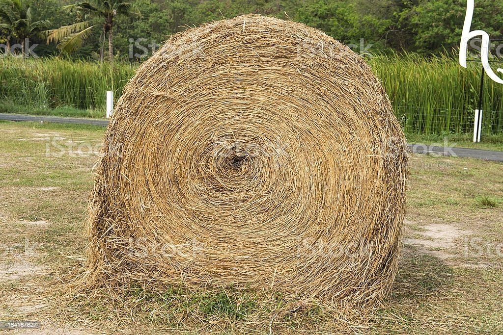 Large rounded hay stack on green grass royalty-free stock photo