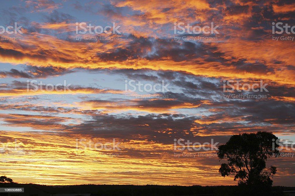 Large sunset stock photo